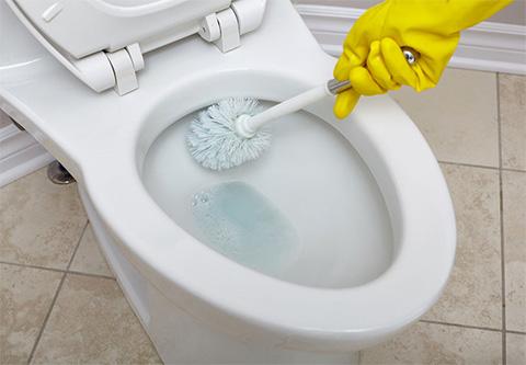 environmentally friendly toilet bowl cleaner