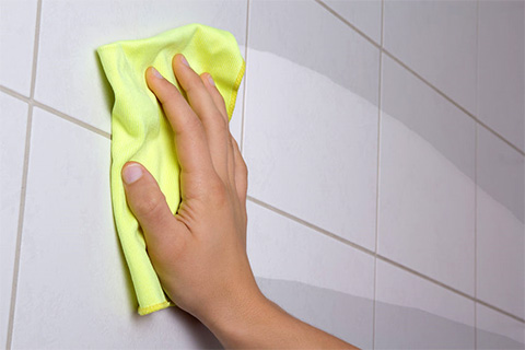Tub Tile and Shower Cleaner