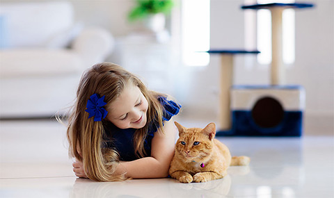 Kid and pet safe surface cleaner